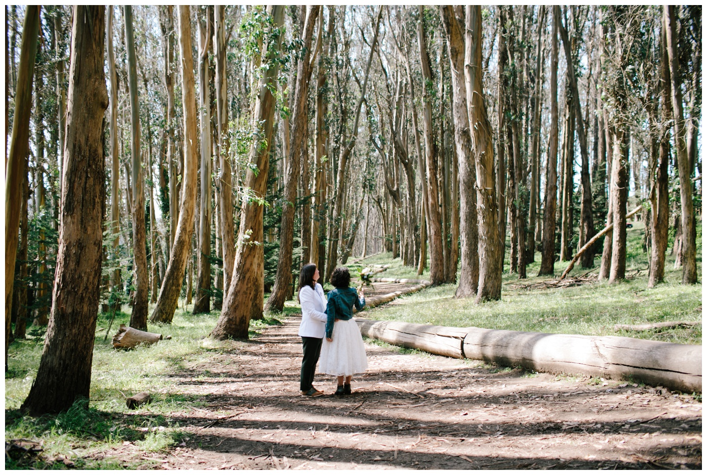 lovers lane san francisco elopement 055
