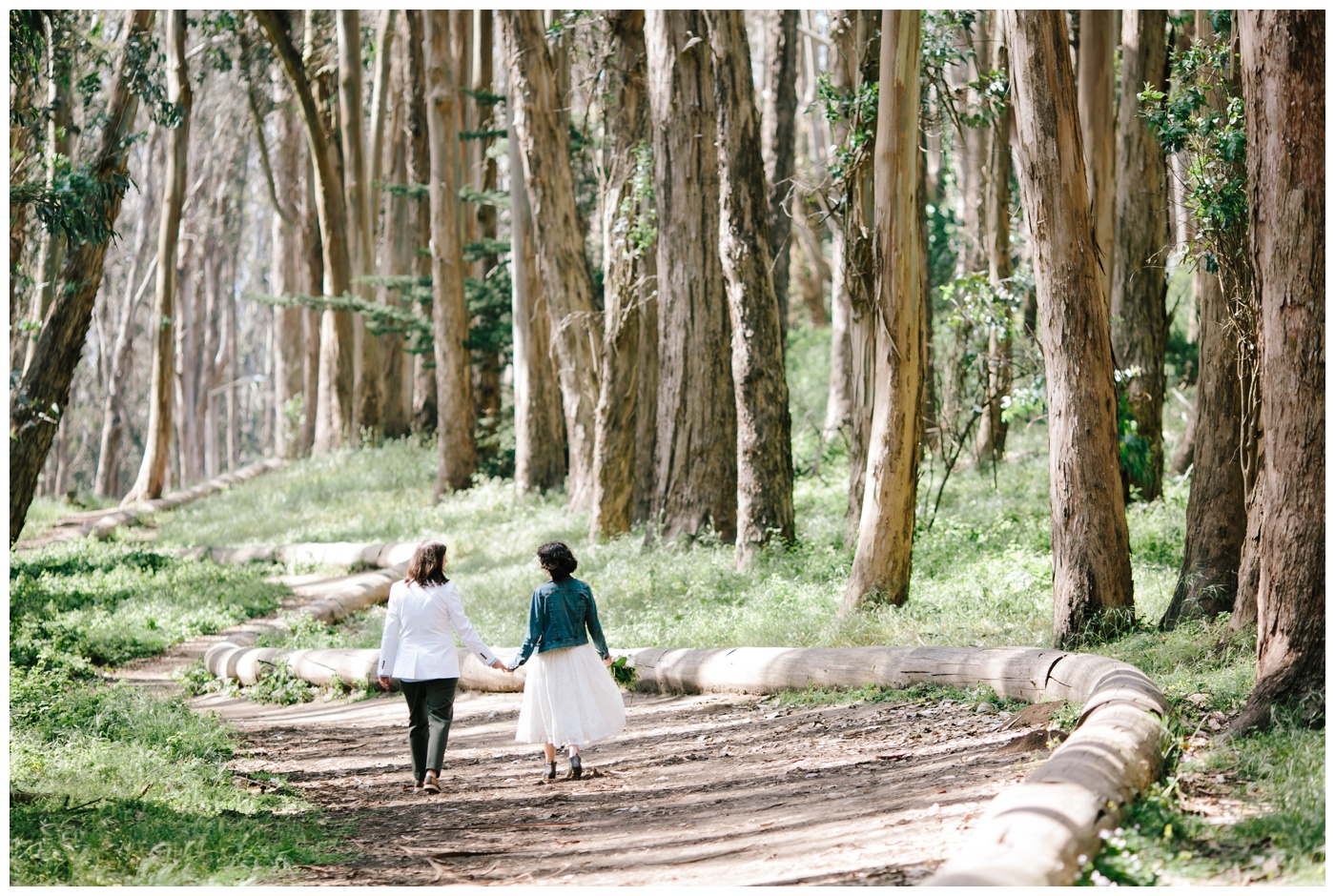 lovers lane san francisco elopement 056